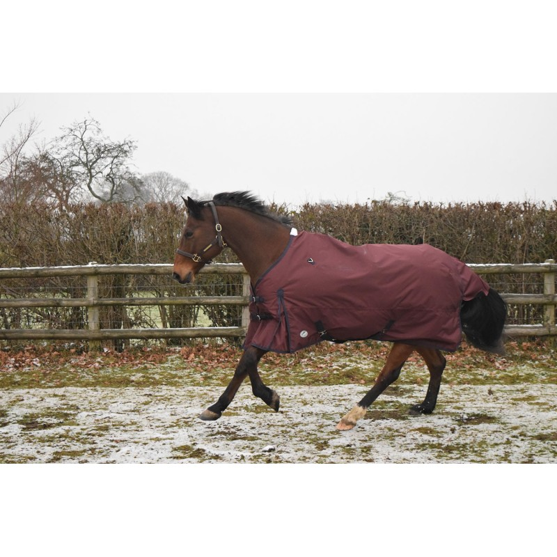 Jhl Essential Lightweight Turnout Rug Standard Neck Burgundy